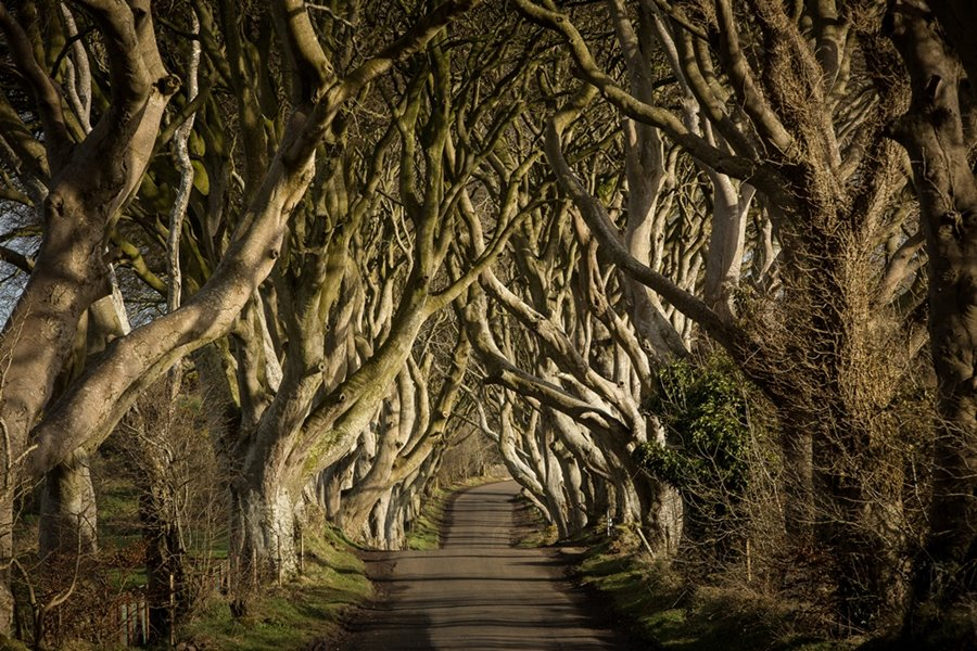 Game of Thrones Tour 8 Tage Entertain Tours