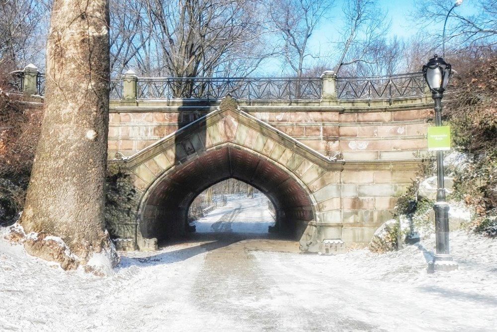 Central Park Entertain Tours